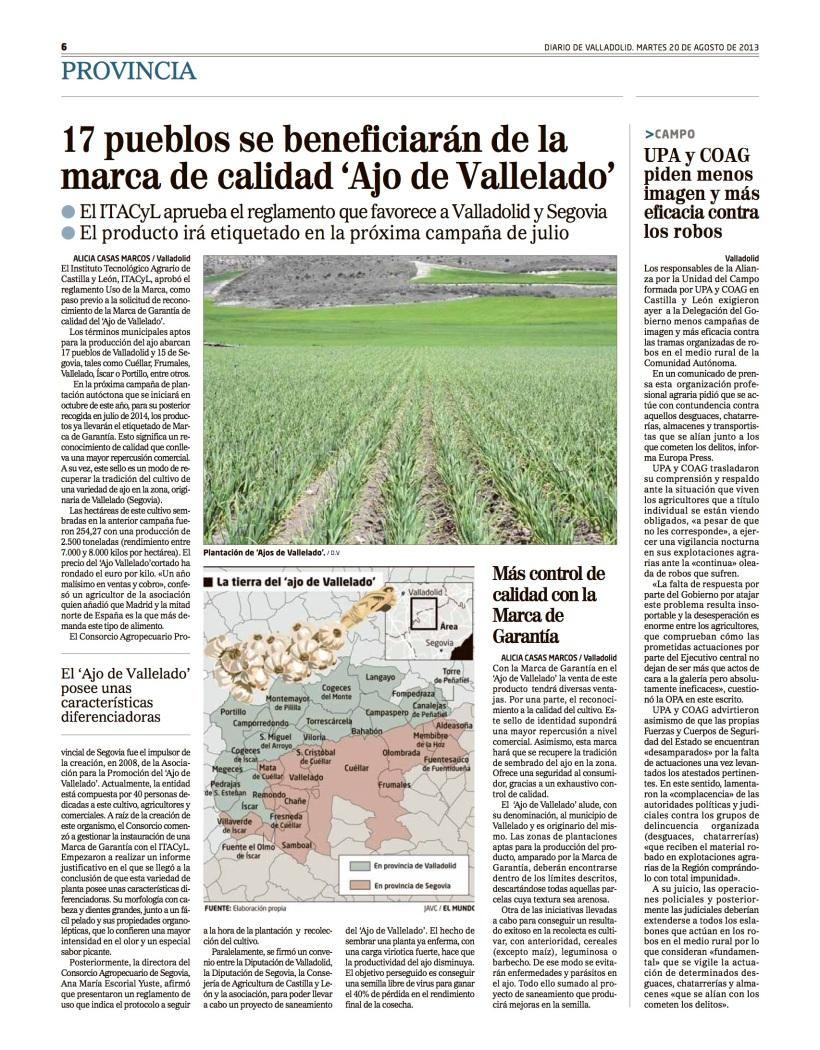 Reportaje Alicia Casas Marcos vallelado